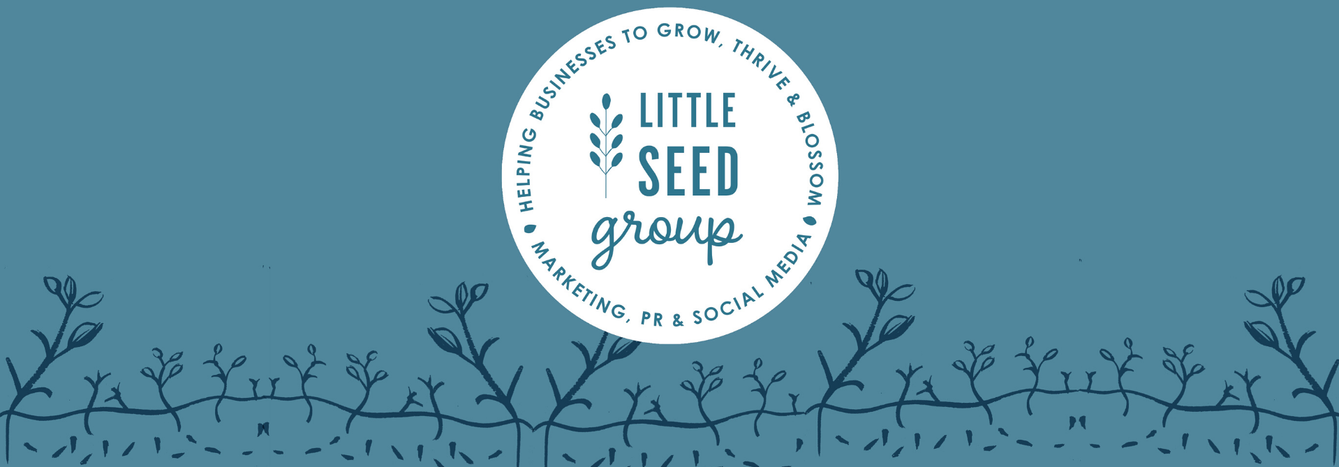 Little Seed Group original branding